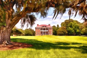 drayton hall is right next door to magnolia plantation and gardens in charleston, sc