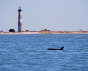 morris island lighthouse off of folly beach, one of the best beaches near charleston sc