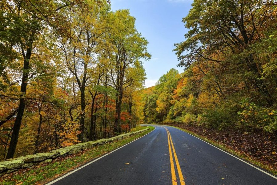 driving through the mountain roads in the fall is a great way to see foliage on weekend road trips from charleston sc