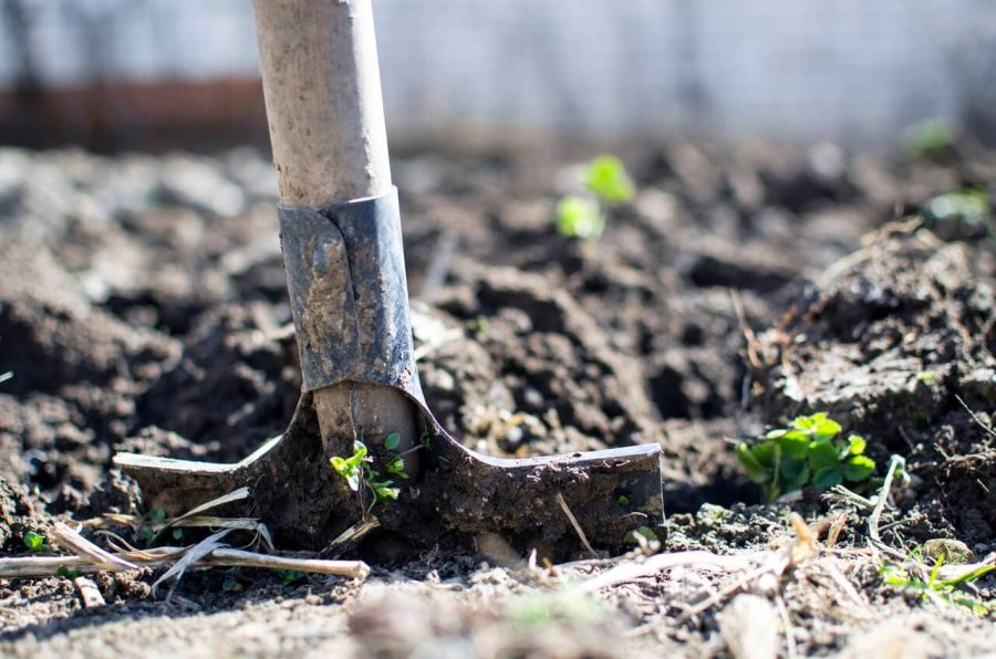 tilling the soil while taking part in community gardening in charleston sc